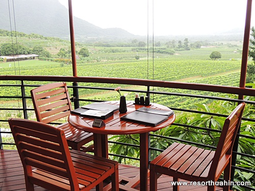 Moonsoon Valley Vineyard Hua Hin